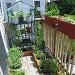 awhao Serre de Jardin Bâche PVC Transparente pour Étagère Balcon Terrasse (Sans Étagère) (B: 69 * 49 * 155cm) de la marque awhao image 3 produit