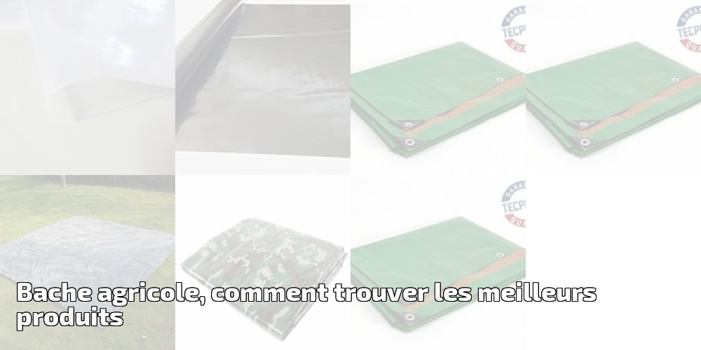 Tecplast PR1310 B/âche serre film PEBD anti UV 24 mois largeur 3 m x 6 m 200 /µ Transparent