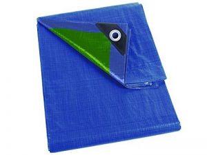 Perel Bâche 5 x 8m Bleu Vert de la marque Perel image 0 produit