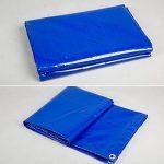 QIANGDA Bâche De Protection Paillage Tarp PVC Canopée Abri De Tente Imperméable Parasol Couverture De Piscine -550g/M², Épaisseur 0.6mm, Multi-taille En Option (taille : 2 x 3m) de la marque QIANGDA-pengbu image 4 produit