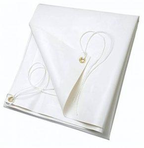 Ribiland 4532 Bâche PVC 2 x 3 m 650 g/m² Blanc de la marque Ribiland image 0 produit