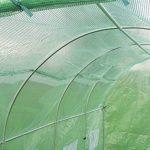 Serre Tunnel en Polyethylène Renforcé 3m x 2m - New Leaf de la marque Primrose image 4 produit