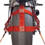 Tendeurs pour roue arrière Sangle, Moto, de sécurité, sangle d'arrimage, rouge, Racefoxx de la marque Racefoxx image 2 produit