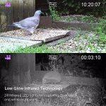 """Victure IP66 Caméra de Chasse 12MP 1080P HD Appareil Photo Animaux de Surveillance Infrarouge de Vision Nocturne Grand Angle avec 2.4"""" LCD à 20M Basse Luminosité de la marque Victure image 4 produit"""