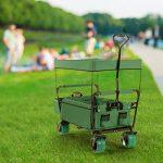 Waldbeck The Green Supreme Chariot pliable pour bricolage plage pique-nique (roues larges 10cm, bâche de protection, sac isotherme, transporte jusqu'à 68kg) - vert de la marque Waldbeck image 1 produit